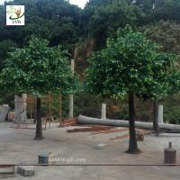 Wholesale UVG 10ft tall handmade green outdoor artificial banyan tree for home christmas decoration GRE052 from china suppliers