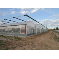 Wholesale Fruits Irrigation Tunnel Multi Span Plastic Film Greenhouse from china suppliers
