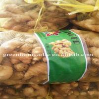 Wholesale Jining greenfarm fresh yellow ginger from china suppliers