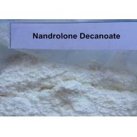 Wholesale Legal Deca Durabolin Steroids Powder Nandrolone Decanoate For Muscle Enhancement from china suppliers