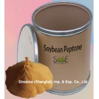 Wholesale Livestock / Poultry Biochemical Supplements Soybean Peptone Powder Purity 70% SBC-PEPS70 from china suppliers