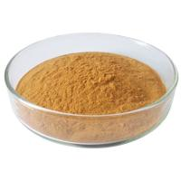 Wholesale  No 84650-60-2 Tea Polyphenols Raw Plant Extract Powder Material For Antioxidants Health Medicine from china suppliers
