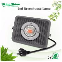 Quality 50w full spectrum Lights for Indoor Plants Cob LED Flood Light for Hydroponic Systems Gardening Greenhouse for sale