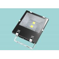 Wholesale Custom Design IP65 Large Outdoor Led Flood Lights 100W For Landscape Lighting from china suppliers
