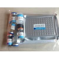 Quality Human  Endothelin 1(ET-1) ELISA Kit for sale