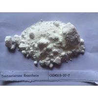 Wholesale White Testosterone Steroids Testosterone Enanthate 250 CAS 315-37-7 from china suppliers