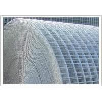 Wholesale Economy Welded Wire Fencing ( 16gauge x 3in x 2in x 50ft x 36in,48in ISO 9001) from china suppliers