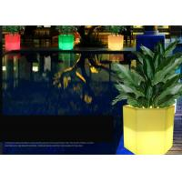 Wholesale PE Rechargeable Plastic Solar Glow In The Dark Flower Pots 16 Colors Changing from china suppliers