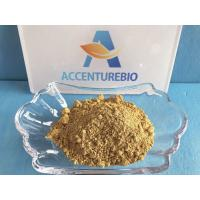 Wholesale 458 37 7 Natural Botanical Extracts 100% Natural API Curcumin Extract Powder from china suppliers