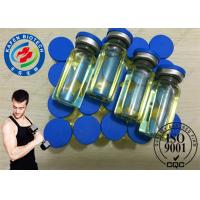 Wholesale 99% Yellow Powder Muscle Growth Trenbolone Steroids / Trenbolone Enanthate CAS 472-61-546 from china suppliers