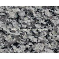 Wholesale Swan White Granite Tiles/Slab, Natural Gray White Granite from china suppliers