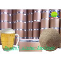 Wholesale Beer Brewery Fungal Food Grade Alpha Amylase Enzyme SINOzym-FAA50BE from china suppliers