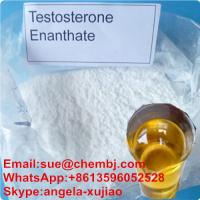 Wholesale Injectable Steroid Hormone Testosterone Enanthate Yellow liquid Test E CAS 315-37-7 from china suppliers