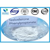 Wholesale Muscle Building Testosterone Anabolic Steroid Testosterone Phenylpropionate 1255-49-8 from china suppliers