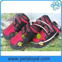 Wholesale China Manufacturer Pet Supply Product Luxury Summer Cool Pet Dog Shoes from china suppliers