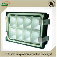 Wholesale IP66 WF2 4000Lm Explosion Proof LED lights 40W 220V For Gas Station Lighting from china suppliers