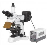 Wholesale Trinocular Fluorescent Microscopes Reflected With High Resolution from china suppliers