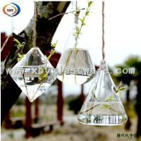 Wholesale glass hanging flower water vase from china suppliers