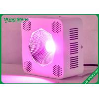 Wholesale Custom Hydroponic Cob Led Grow Lights For Horticulture And Vegetables from china suppliers