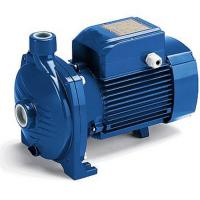 Wholesale Large Flow Centrifugal Water Pump 2HP / 1.5KW For Irrigating Gardens from china suppliers