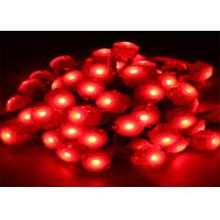 Wholesale Waterproof 0.25W 20mm Red Color 12 volt LED Light 2 Years Warranty 5050 from china suppliers