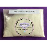 Wholesale CAS 303-42-4 Methenolone Enanthate Sex Enhancing Drugs For Bodybuilding , High Pure from china suppliers