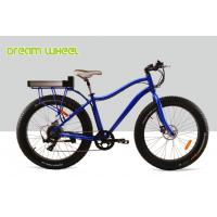 Wholesale Blue Beach Cruiser Electric Bike Fat Tire 48V 750W Shimano 6 Speed Snow Road from china suppliers