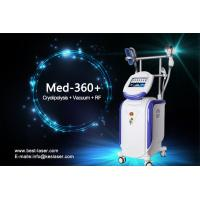 Wholesale Multifunction Vertical Cryolipolysis Machine , Beauty Salon Machine Medical CE Approval from china suppliers