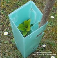 China Customize PP Corrugated plastic Corflute plant guards / Coroplast / Correx Tree Protector for sale