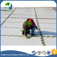 Wholesale Pure Material Factory Price Synthetic Ice Rink Floor from china suppliers