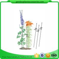 """Wholesale Single Grow Garden Plant Supports / Spiral Plant Support 4"""" Z - Rings from china suppliers"""