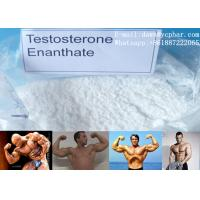 Wholesale Primoteston Bulk Testosterone Enanthate Powder CAS 315-37-7 For Asthma from china suppliers