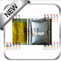 Quality Efffective Weight Loss Steroids DNP 2, 4-Dinitrophenol Yellow Powder 51-28-5 for sale