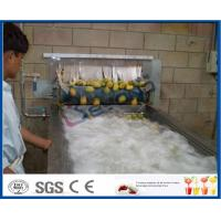 Wholesale Pineapple Mango Processing Line , Fruit Juice Mango Pulp Processing Plant from china suppliers