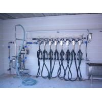 Wholesale Fish bone Pipeline Herringbone Milking System 4KW 380V / 50Hz from china suppliers