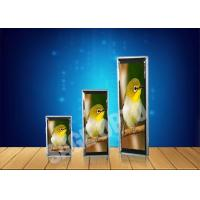 Wholesale Lightweight P4 Ultra Thin LED Displays Advertisement , HD Video Wall from china suppliers