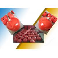 Wholesale Thermal Controlled Automatic Fire Extinguisher 20L Container from china suppliers