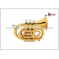 Wholesale Mini Brass Musical Instruments Bb Key Pocket Trumpet / Student Model Trumpet HTP8504G from china suppliers