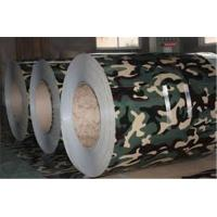 Wholesale SPCC SPCH Ral 9006 Paint Galvanized Steel sheet coil Customized Ral  color from china suppliers