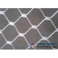 Buy cheap Beautiful Grid Mesh for Protection, Firm Structure & Corrosion Resistance from wholesalers