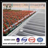 Wholesale why choose Anping Yilida expanded mesh factory to supply the greenhouse bench? from china suppliers