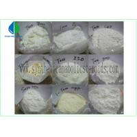 Wholesale Testosterone Isocaproate Male Muscle Enhancing Steroids CAS 15262-86-9 White Powder from china suppliers