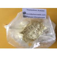Buy cheap Trenbolone Acetate Anabolic Steroid Trenbolone Powder Tren CAS NO 10161-34-9 from wholesalers
