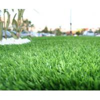 Wholesale PP, Polyethylene Artificial Grass Lawn For Landscaping / roof, garden from china suppliers