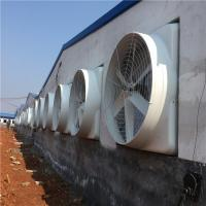 Wholesale Factory price Roof Window Mount Industrial FRP Exhaust Fan / poultry fan / FRP fan from china suppliers