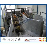 Wholesale Fully Automatic PLC Control Pineapple Processing Line For Fruit Juice Processing Machines from china suppliers