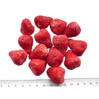 Quality Freeze Dried Strawberry Whole for chocolate/ dried strawberries/Strawberry Crunch for sale