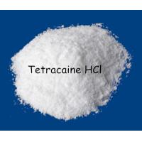 Wholesale Local Anesthetic Pain Killer Drug, CAS 136-47-0 Tetracaine HCl/Tetracaine Hydrochloride from china suppliers