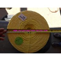 Wholesale 0.83g/m 100% PP Virgin Material Tomato Tying Rope Agricultural String White Color from china suppliers
