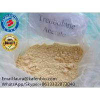 Wholesale 99% Purity Ananbolic Trenbolone Steroids Hormone Powder Trenbolone Acetate CAS:10161-34-9 from china suppliers